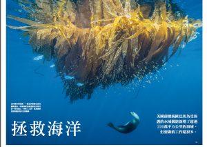 2拯救海洋