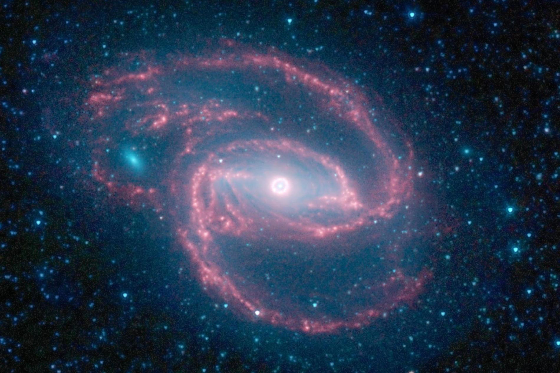 恒星繞黑洞