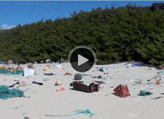 海洋沖刷垃圾上岸