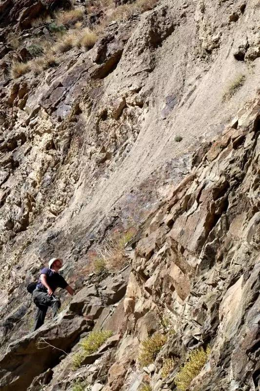 巴西副教授在考察恐龍足跡。攝影:邢立達