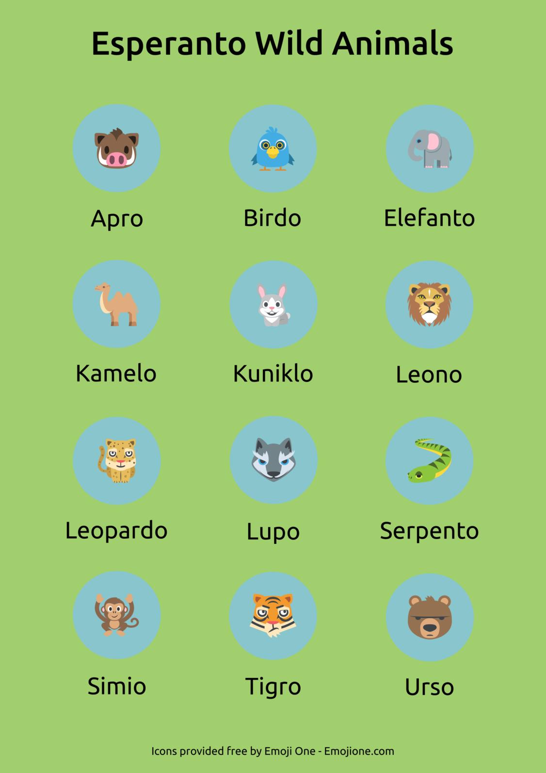 一些世界語動物單詞。圖片來源:yayesperanto.com