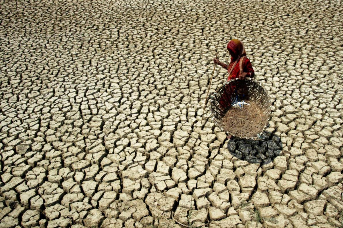 一位婦女行走在印度巴德拉克縣(Bhadrak)巴蘇德布普爾村(Basudevpur village)乾涸龜裂的土地上。南亞許多地區愈來愈燠熱潮溼,除非溫室氣體不再累積,否則氣候的暖化趨勢將持續下去。/PHOTOGRAPH BY BISWARANJAN ROUT, AP