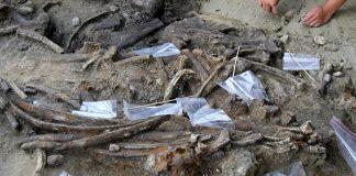 菲律賓呂宋島上發現一處70萬年前的遺址